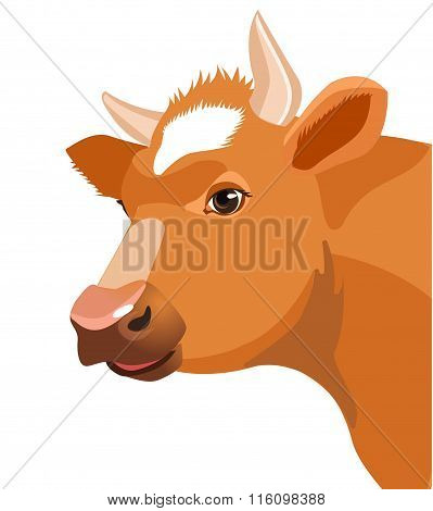 Cow Face Vector Image. Cow Face on a White Background. Farm Animal. Cow Face Icon. Cute Cow.
