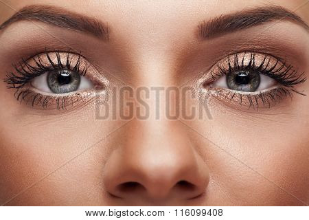 Close Up Eyes With Perfect Make Up