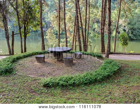 Garden Table And Chairs In Pine Tree Forest