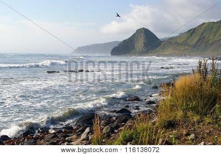 Rocky shore of island Kunashir
