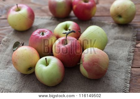 The Mellow Apples