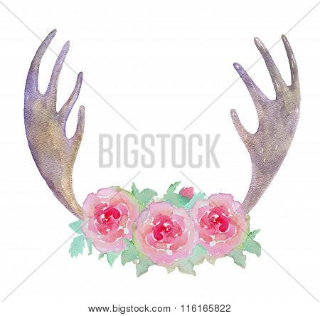 Watercolor Elk Antlers And Pink Roses Isolated On White Background.