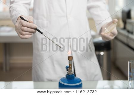 Scientist Doing Experiment In Laboratory