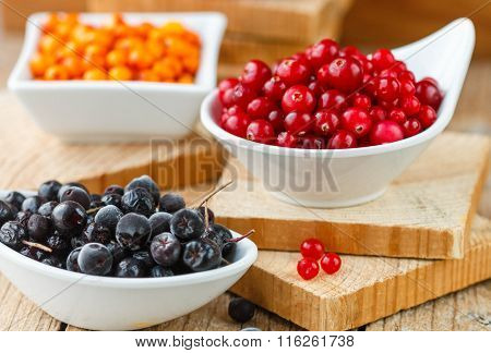 Fresh Berries For The Compote - Cranberry, Sea Buckthorn, Aronia