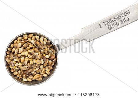 seed on metal measuring tablespoon, isolated on white