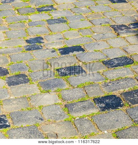 harmonic vintage cobble stone street pattern with grass