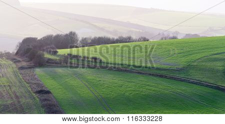 Later afternoon sunshine highlights the rolling nature of the South Downs close to Lewes in East Sussex poster