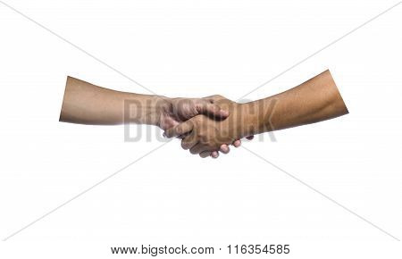 two clasp hand isolated on white background
