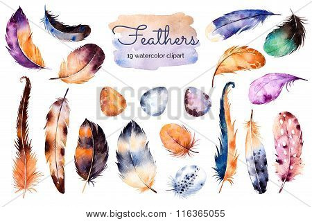 Watercolor hand painted set with 19 elements; feathers