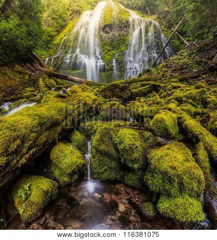 Beautiful Proxy falls in mist in Oregon rain forest