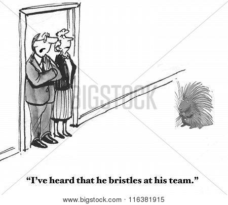 Bristles At His Team