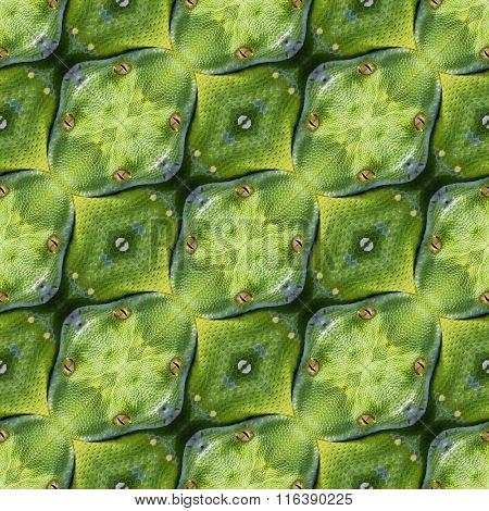 Abstract Reptilian Skin Seamless Pattern Texture