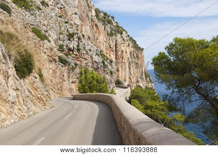 Road along the rocks