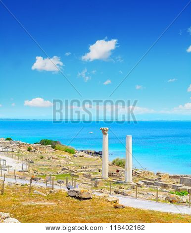 Famous Columns In Tharros