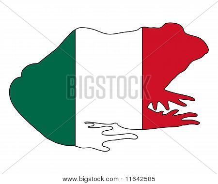 Detailed and colorful illustration of bullfrog Mexico poster