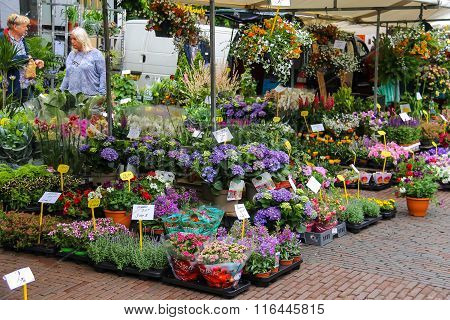 People Buying Flowers At The Street Flower Shop On The Grote Markt In Haarlem, The Netherlands