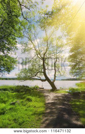 Scandinavian beautiful landscape