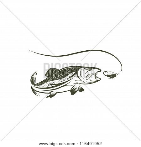 Salmon And Lure Vector Design Template