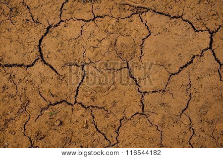 The Cracked Ground,  Soil Texture And Dry Mud
