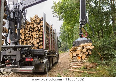 Truck Lifting Tree Trunks With Grabber On Trailer
