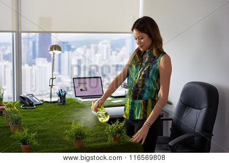 Ecologist Business Woman Watering Plants In Corporate Office