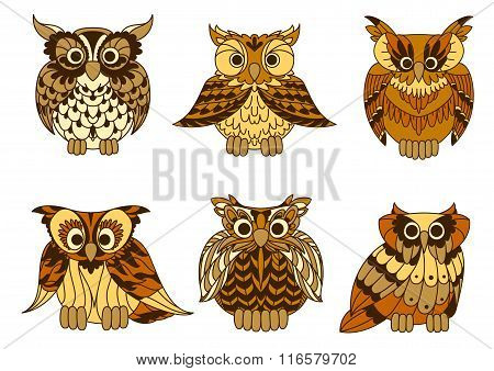 Great horned owls with mottled brown plumage