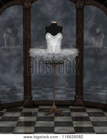 White Classical Ballet Tutu Reflections