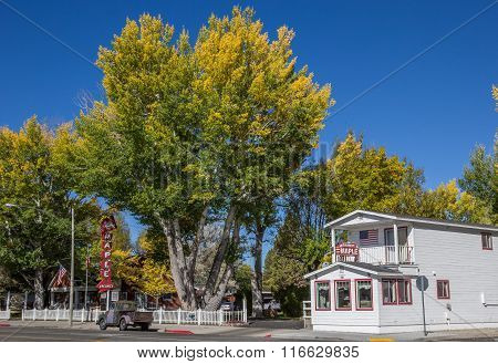 Autumn Colors In Main Street Bridgeport, California