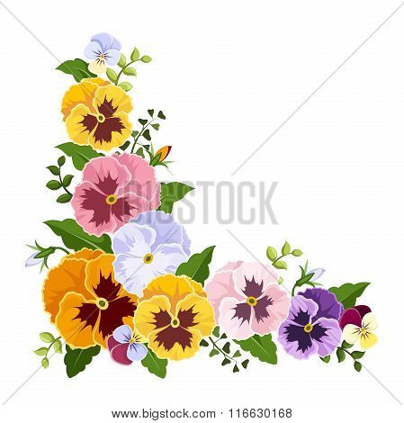 Colorful pansy flowers corner. Vector illustration.