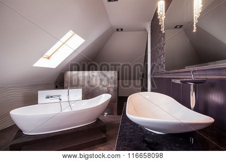 Luxurious Elegant Bathroom