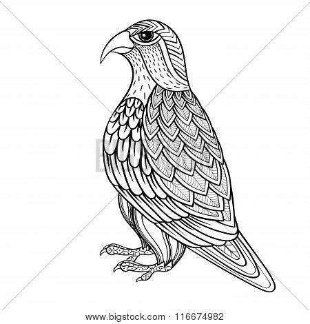Zentangle vector Falcon, bird hawk of prey, predatory for adult
