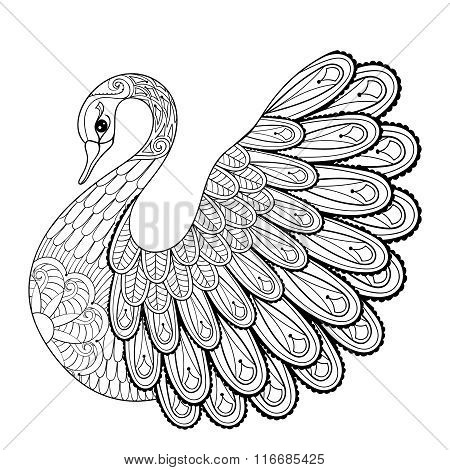 Hand drawing artistic Swan for adult coloring pages in doodle, z