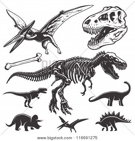 Set of dinosaurs elements