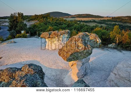 The Stone Mushrooms viewed from above near Beli plast village, Kardzhali Region, Bulgaria
