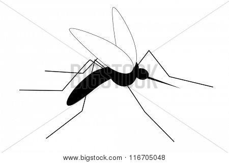 Stylized gnat on white background