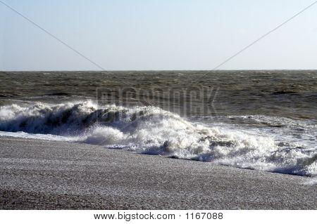 Surf & Foam