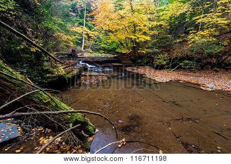 Sixmile Creek Near Ithaca, Ny