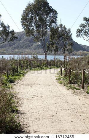 Batiquitos Lagoon Trails Surrounding Lake