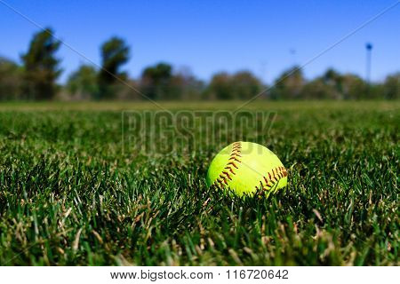 Softball At A Field In California
