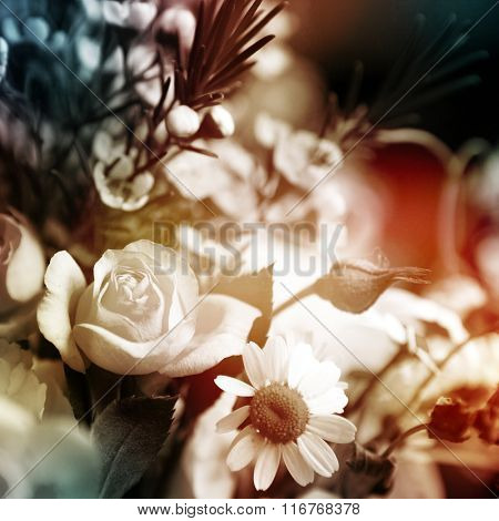 beautiful flowers made with color filters