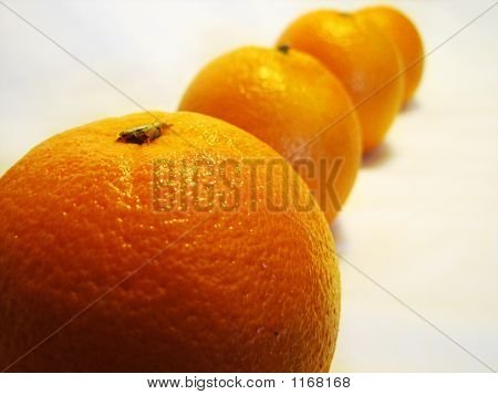 Row Of Oranges