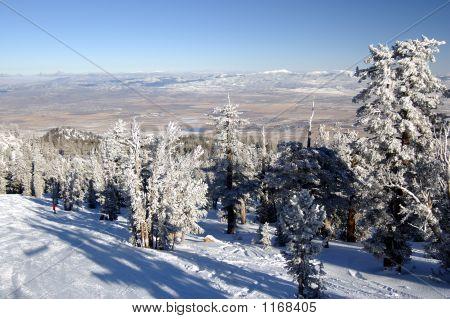Skiing Into Desert