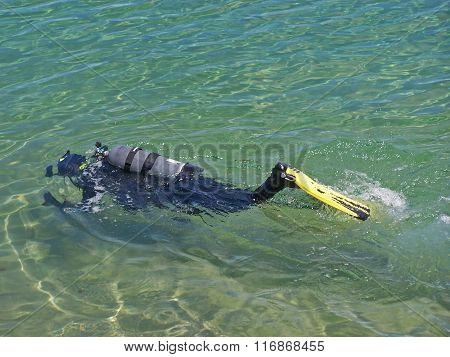 Scuba diver swimming at the water's surface