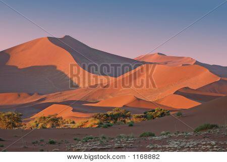 Red Dunes Pink Sunset
