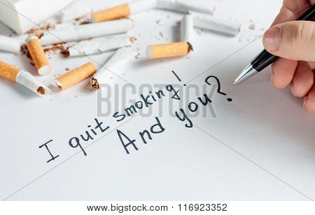Antismoking background with broken cigarettes. Stop smoking