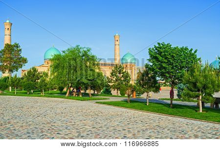 The Mosque Behind The Trees