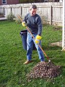man raking autumn leaves in the yard poster