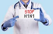 Doctor keeps a card with the name of the diagnosis - stop swine flu (h1n1). Selective focus. Medical concept. poster