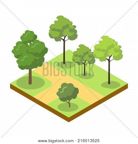Park alley with big trees isometric 3D icon. Decorative plant and green grass vector illustration. Nature map element for summer parkland landscape design.