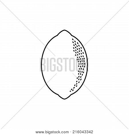 vector flat sketch styleblack and white contour fresh ripe lemon. Isolated illustration on a white background. Healthy vegetarian eating, dieting and lifestyle design object.